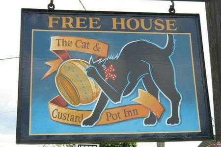 cat custard photo sign // 600x400 // 34.0KB