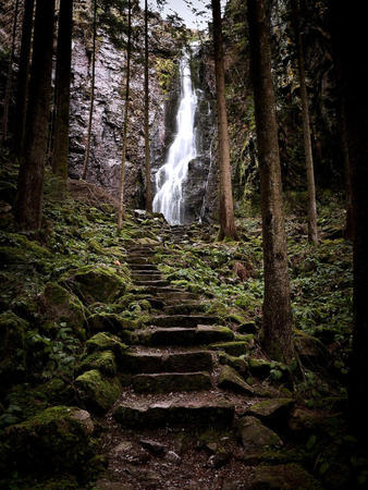 cliff forest photo scenery stairs waterfall // 540x720 // 220.6KB