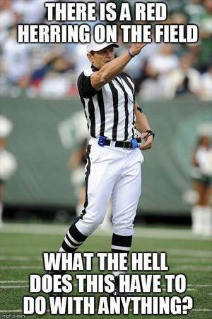 fallacy macro nfl reaction red_herring referee // 500x751 // 48.6KB