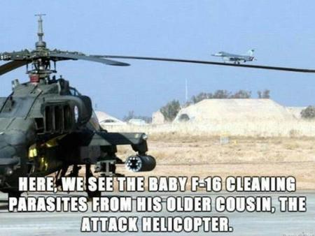 helicopter humor jet macro photo // 600x450 // 36.4KB