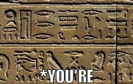 grammar hieroglyphs macro reaction // 600x380 // 50.7KB
