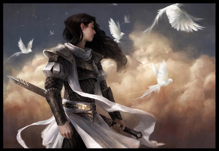 armor bird brunette sword // 891x613 // 317.7KB