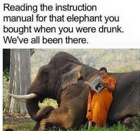 elephant humor instructions // 600x560 // 67.5KB