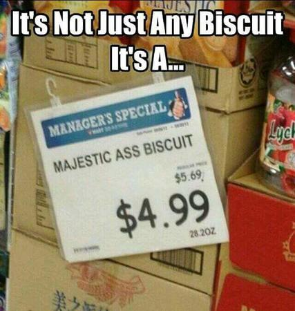 biscuit humor macro majestic photo sign // 640x674 // 51.3KB