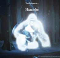 harambe harry_potter patronus // 1049x1009 // 1.1MB