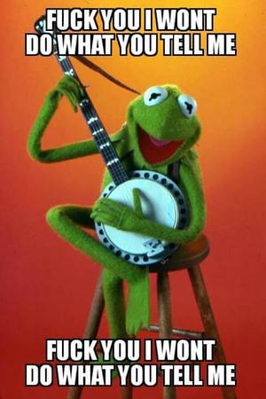 banjo fuck_you kermit kermit_t_frog macro muppet rage_against_the_machine reaction // 480x721 // 34.6KB