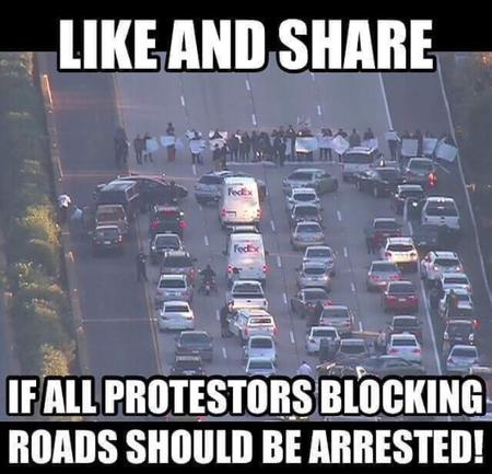 bullshit macro photo protest traffic // 750x721 // 563.1KB