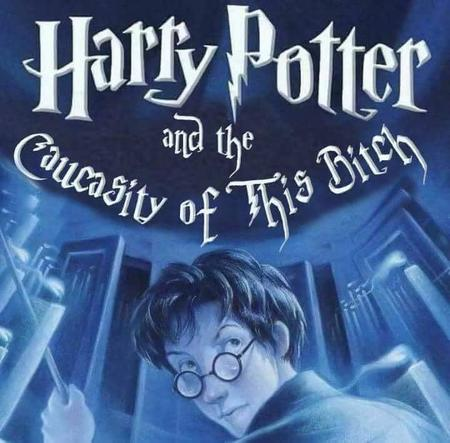 audacity book cover harry_potter humor // 720x708 // 48.2KB