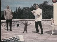 animated cat dance hitler // 384x288 // 1.2MB