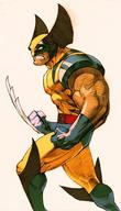 street_fighter wolverine x-men // 334x585 // 44.9KB
