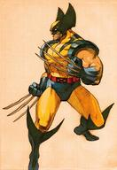 street_fighter wolverine x-men // 401x585 // 56.3KB